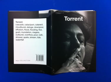Pilot edition of Torrent featuring Indian artist Nalini Malani.